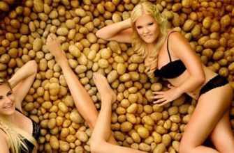 Картофель предотвращает инсульт, выпадение волос и рак