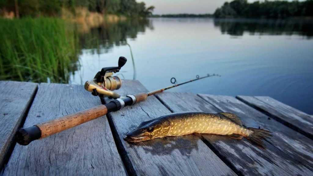 Рыбалка мужа и его любимые тапочки