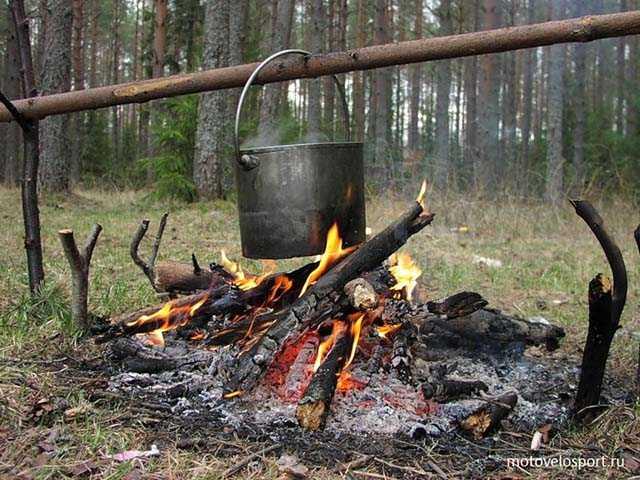 Таежный суп. Кухня и лечение в тайге эвенкийских оленеводов
