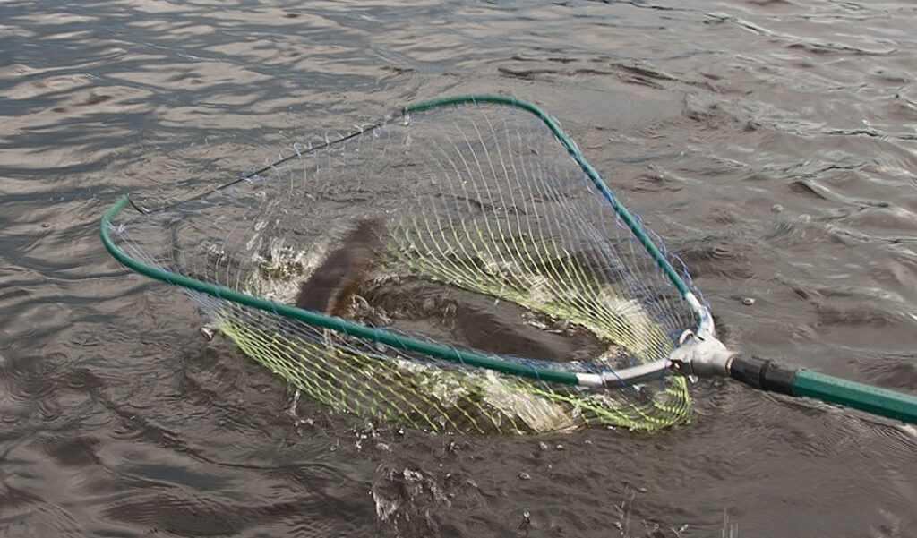 Смешной случай на летней рыбалке с друзьями