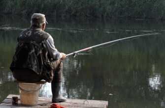 История из жизни. Забывчивый рыбак остается без улова