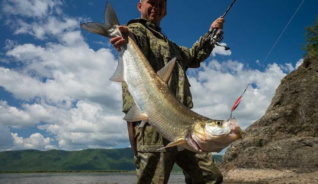 Рыбалка на Амуре как способ избавиться от энергетического негатива