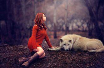 Волчица стала помощницей потомственной знахарки