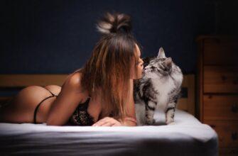 Если дома у вас есть кошка