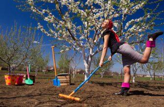 Первые шаги садовода