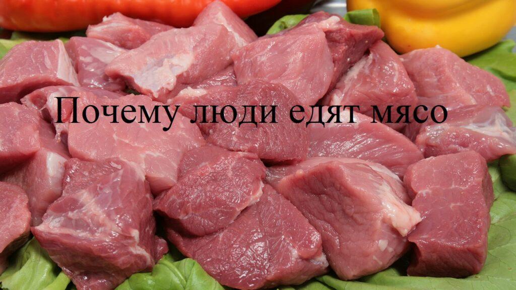 Почему люди едят мясо